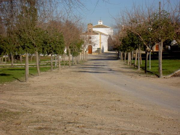 Llano de alharilla, en Porcuna